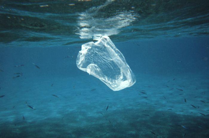 plagas de plásticos en los océanos 01