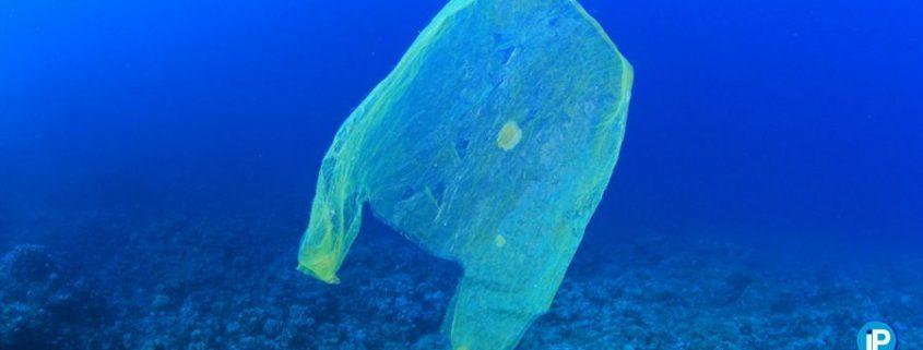 plagas de plásticos en los océanos portada