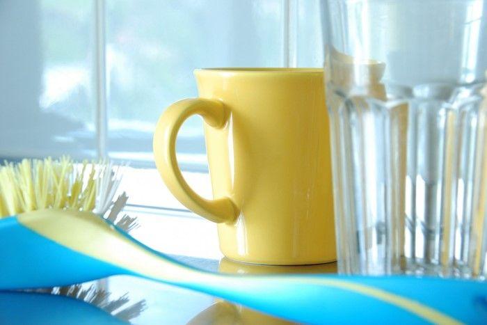 prevenir las plagas de cucarachas lavando los platos
