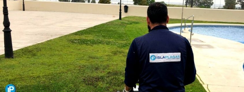 servicios de limpieza en Cádiz portada
