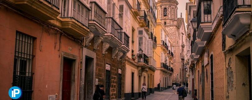 Servicio de eliminación de Termitas en Cádiz