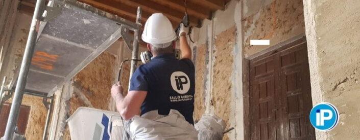 termitas en obras